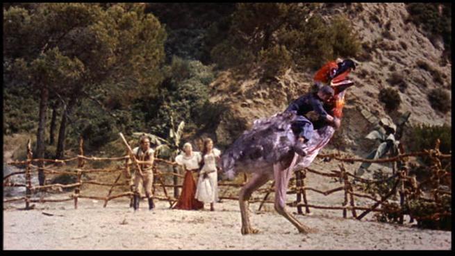 Típico rodeo à moda dos Boxinos, com uma galinha amestrada. Segue-se o encerramento das festas com o espetacular fogo preso de Páscoa e Cia Lda.